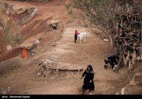 مردم روستاهای بخش بشارت الیگودرز به دلیل رانش زمین و قطعی راه، ۵ ماه در حبس به سر میبرند و آذوقهای در بساط ندارند.