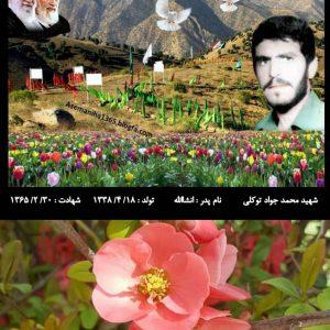 شهید محمد جواد توکلی از شهدای حاج عمران